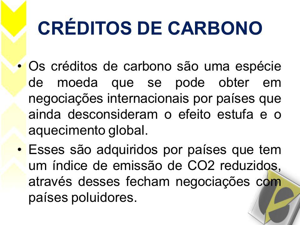 CRÉDITOS DE CARBONO •Os créditos de carbono são uma espécie de moeda que se pode obter em negociações internacionais por países que ainda desconsidera