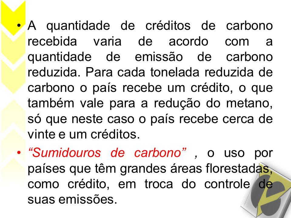 •A quantidade de créditos de carbono recebida varia de acordo com a quantidade de emissão de carbono reduzida. Para cada tonelada reduzida de carbono