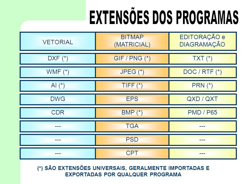 VETORIAL BITMAP (MATRICIAL) EDITORAÇÃO e DIAGRAMAÇÃO DXF (*)GIF / PNG (*)TXT (*) WMF (*)JPEG (*)DOC / RTF (*) AI (*)TIFF (*)PRN (*) DWGEPSQXD / QXT CD