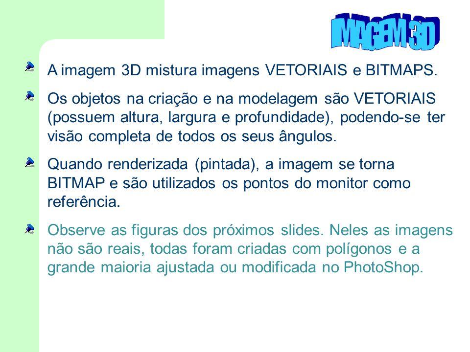 A imagem 3D mistura imagens VETORIAIS e BITMAPS. Os objetos na criação e na modelagem são VETORIAIS (possuem altura, largura e profundidade), podendo-