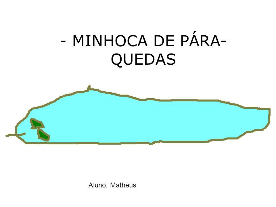 - MINHOCA DE PÁRA- QUEDAS Aluno: Matheus
