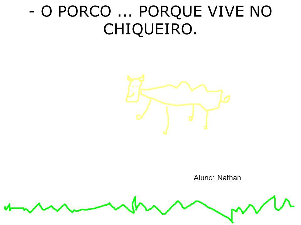 - O PORCO... PORQUE VIVE NO CHIQUEIRO. Aluno: Nathan