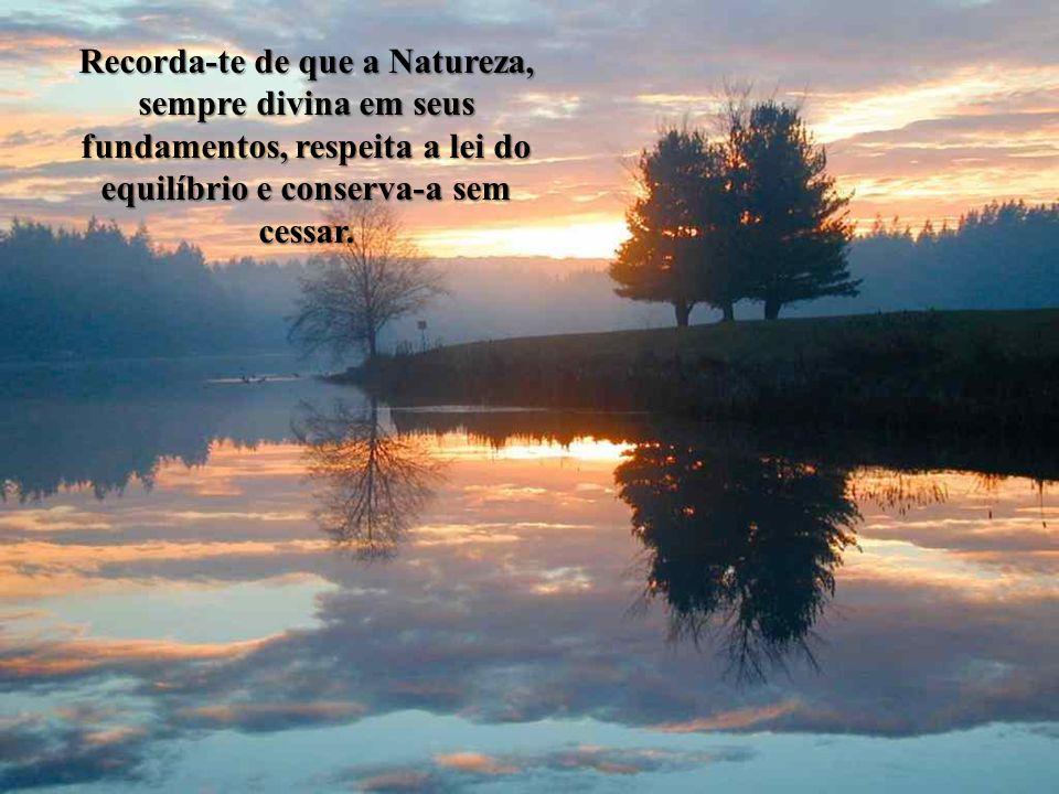 Recorda-te de que a Natureza, sempre divina em seus fundamentos, respeita a lei do equilíbrio e conserva-a sem cessar.