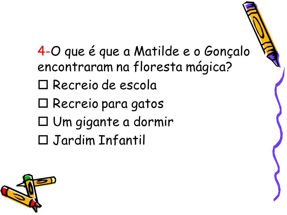 4-O que é que a Matilde e o Gonçalo encontraram na floresta mágica?  Recreio de escola  Recreio para gatos  Um gigante a dormir  Jardim Infantil