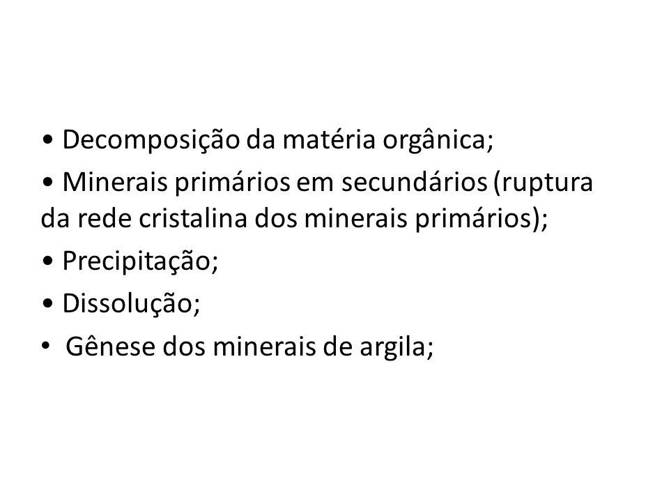 • Decomposição da matéria orgânica; • Minerais primários em secundários (ruptura da rede cristalina dos minerais primários); • Precipitação; • Dissolução; • Gênese dos minerais de argila;