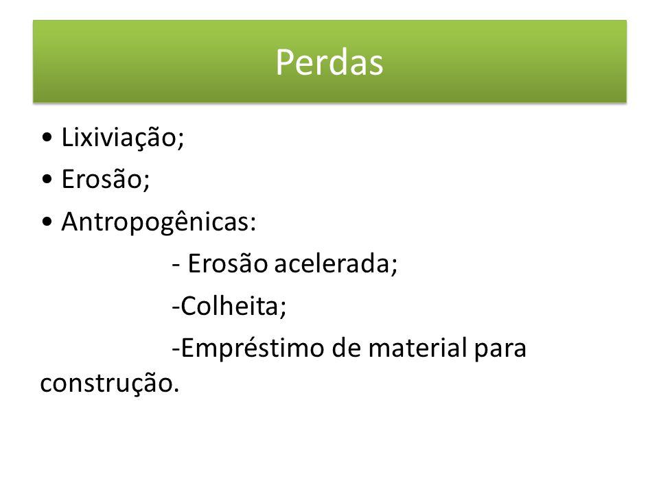 Perdas • Lixiviação; • Erosão; • Antropogênicas: - Erosão acelerada; -Colheita; -Empréstimo de material para construção.