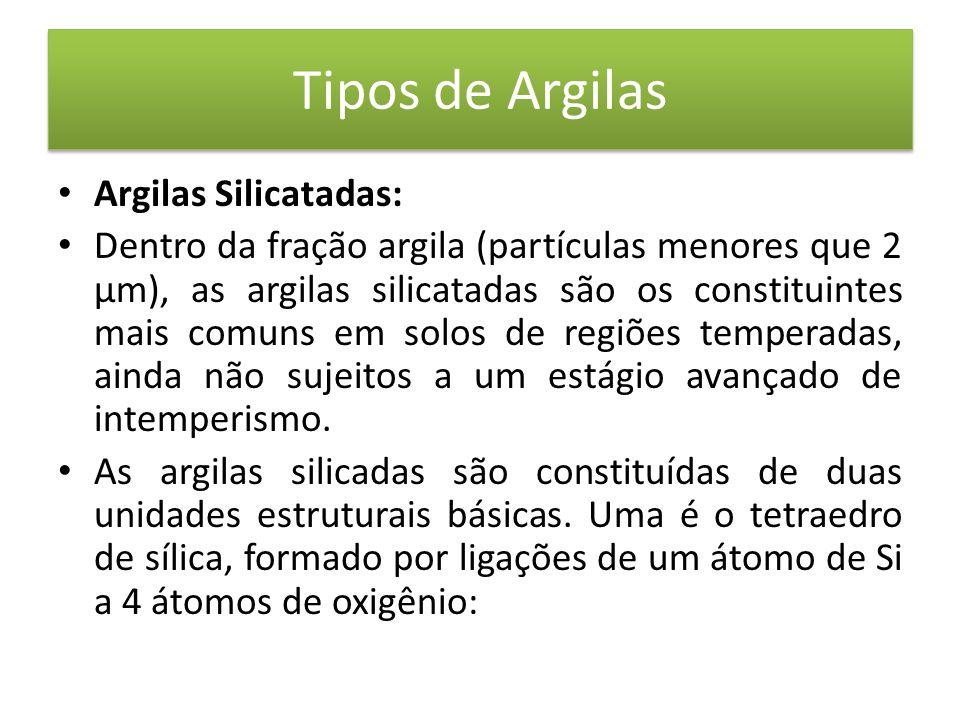 Tipos de Argilas • Argilas Silicatadas: • Dentro da fração argila (partículas menores que 2 µm), as argilas silicatadas são os constituintes mais comuns em solos de regiões temperadas, ainda não sujeitos a um estágio avançado de intemperismo.