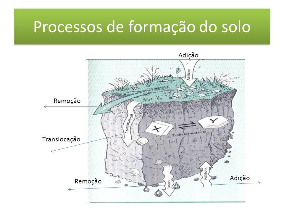 Formação do horizonte B latossólico • Predomínio: - Perdas (bases) -Transformação • Principais horizontes: - B latossólico - B nítico ??.