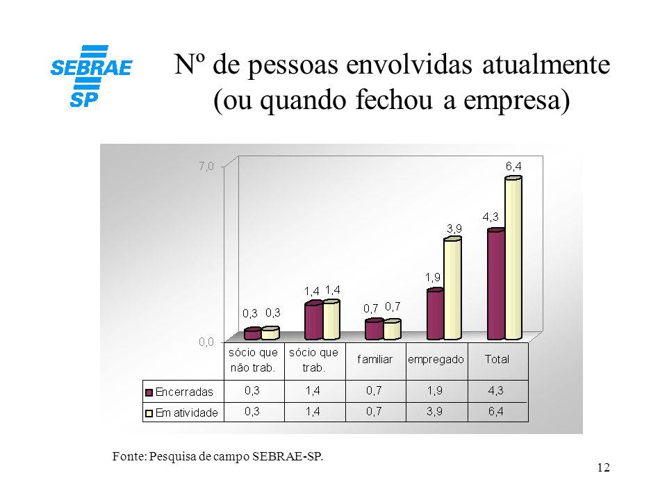 12 Nº de pessoas envolvidas atualmente (ou quando fechou a empresa) Fonte: Pesquisa de campo SEBRAE-SP.