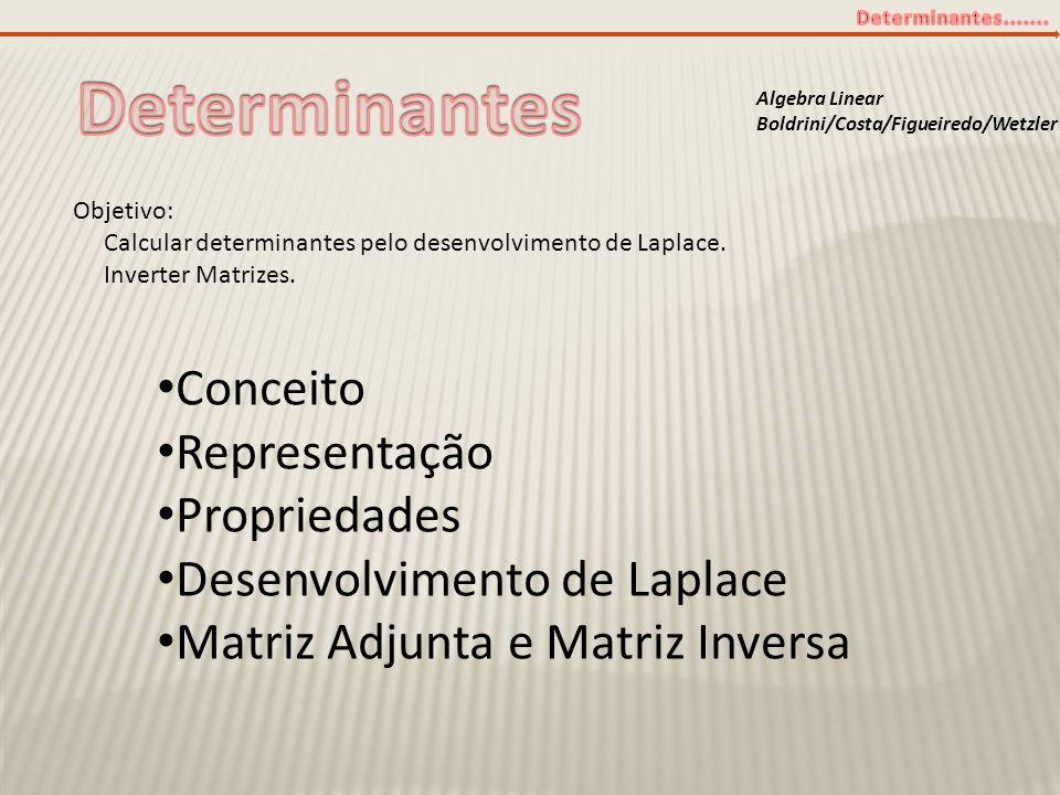 Algebra Linear Boldrini/Costa/Figueiredo/Wetzler Objetivo: Calcular determinantes pelo desenvolvimento de Laplace. Inverter Matrizes. • Conceito • Rep