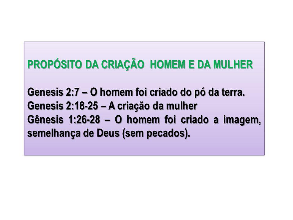 PROPÓSITO DA CRIAÇÃO HOMEM E DA MULHER Genesis 2:7 – O homem foi criado do pó da terra. Genesis 2:18-25 – A criação da mulher Gênesis 1:26-28 – O home