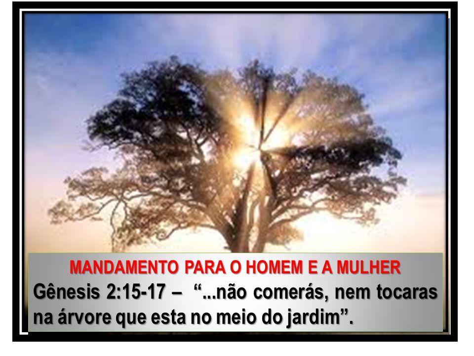 """MANDAMENTO PARA O HOMEM E A MULHER Gênesis 2:15-17 – """"...não comerás, nem tocaras na árvore que esta no meio do jardim"""". MANDAMENTO PARA O HOMEM E A M"""