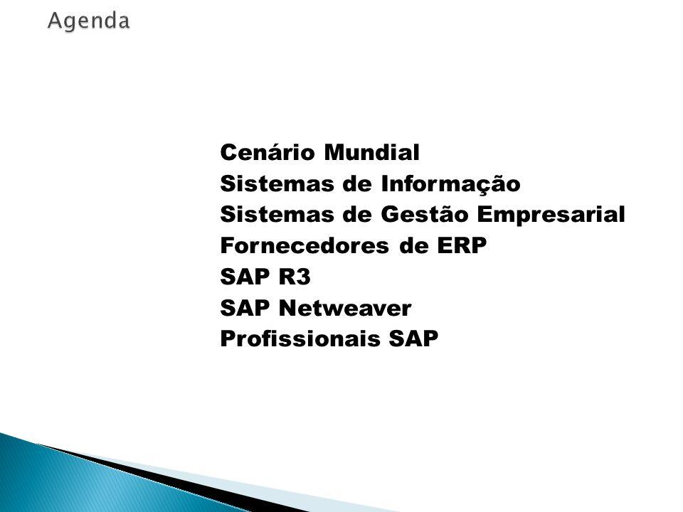 Cenário Mundial Sistemas de Informação Sistemas de Gestão Empresarial Fornecedores de ERP SAP R3 SAP Netweaver Profissionais SAP