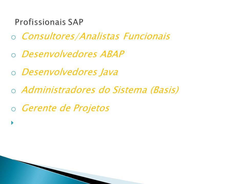 o Consultores/Analistas Funcionais o Desenvolvedores ABAP o Desenvolvedores Java o Administradores do Sistema (Basis) o Gerente de Projetos 