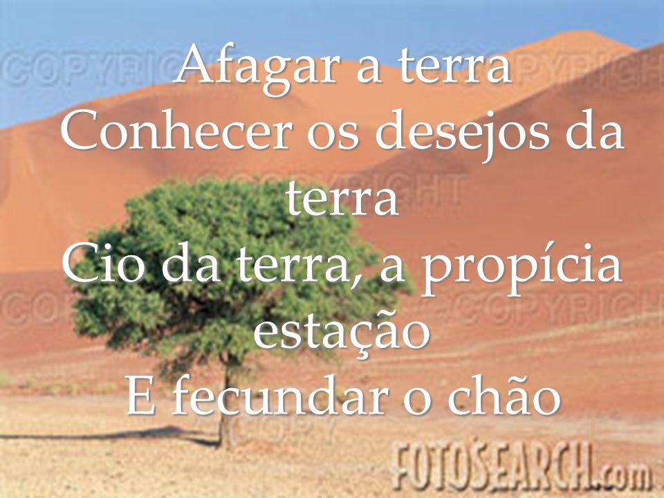 Afagar a terra Conhecer os desejos da terra Cio da terra, a propícia estação E fecundar o chão