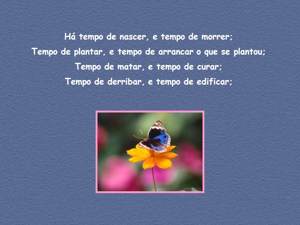 Há tempo de nascer, e tempo de morrer; Tempo de plantar, e tempo de arrancar o que se plantou; Tempo de matar, e tempo de curar; Tempo de derribar, e tempo de edificar;