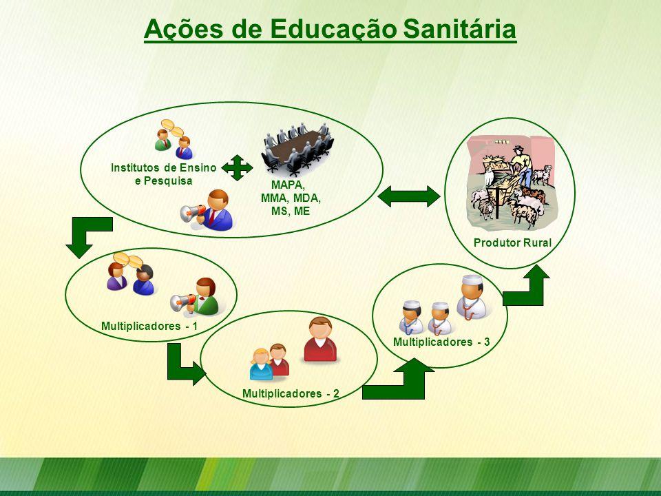 MAPA, MMA, MDA, MS, ME Institutos de Ensino e Pesquisa Multiplicadores - 1 Multiplicadores - 2 Multiplicadores - 3 Produtor Rural Ações de Educação Sa