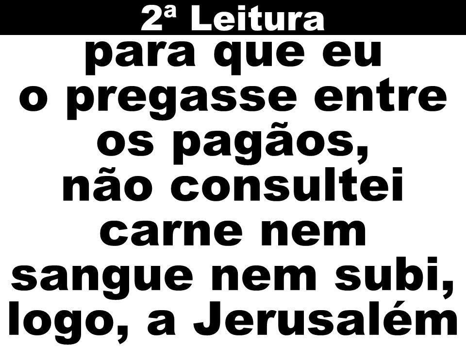 para que eu o pregasse entre os pagãos, não consultei carne nem sangue nem subi, logo, a Jerusalém 2ª Leitura