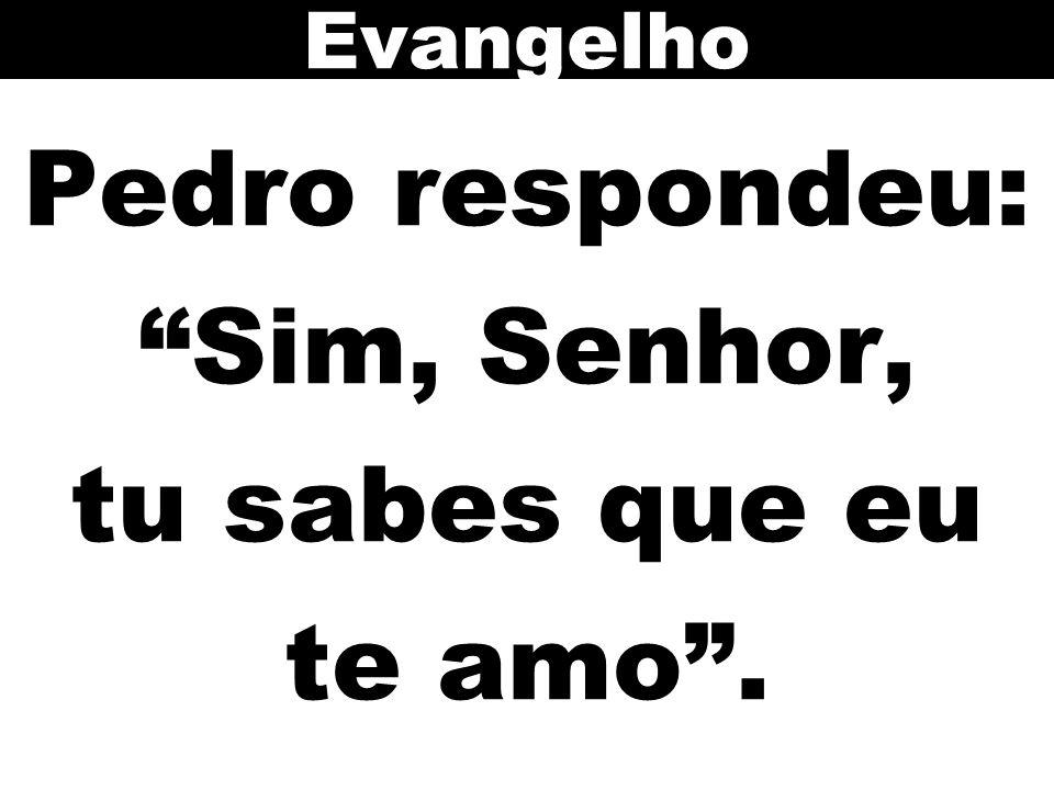 """Pedro respondeu: """"Sim, Senhor, tu sabes que eu te amo"""". Evangelho"""