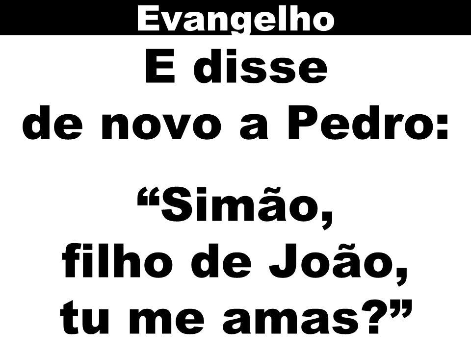 """E disse de novo a Pedro: """"Simão, filho de João, tu me amas?"""" Evangelho"""