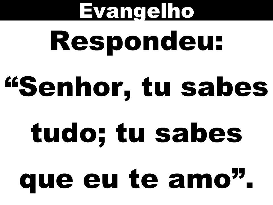 """Respondeu: """"Senhor, tu sabes tudo; tu sabes que eu te amo"""". Evangelho"""