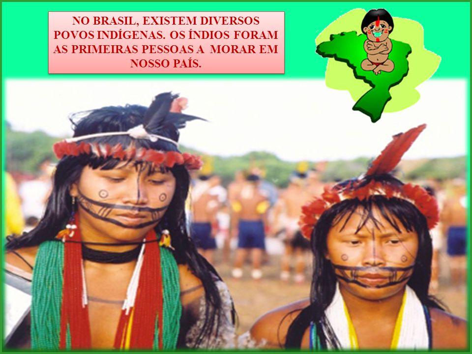 NO BRASIL, EXISTEM DIVERSOS POVOS INDÍGENAS. OS ÍNDIOS FORAM AS PRIMEIRAS PESSOAS A MORAR EM NOSSO PAÍS.