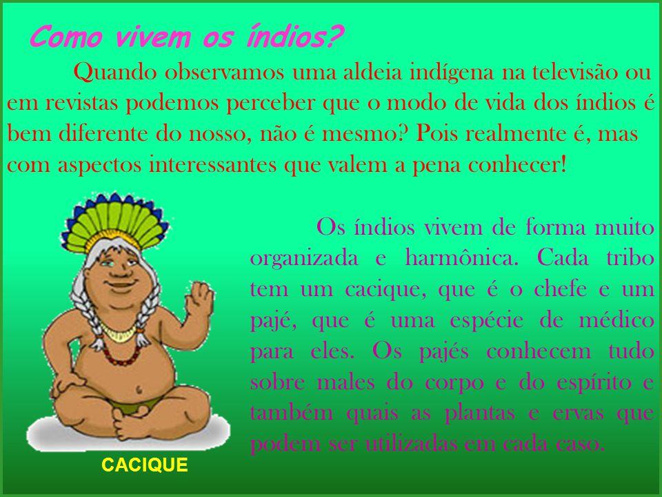 Os índios vivem de forma muito organizada e harmônica. Cada tribo tem um cacique, que é o chefe e um pajé, que é uma espécie de médico para eles. Os p