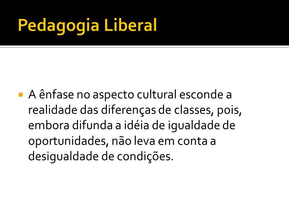  A ênfase no aspecto cultural esconde a realidade das diferenças de classes, pois, embora difunda a idéia de igualdade de oportunidades, não leva em