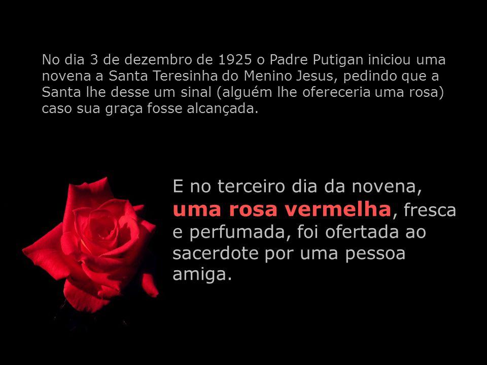 Você conhece a história da Novena das Rosas de Santa Teresinha?