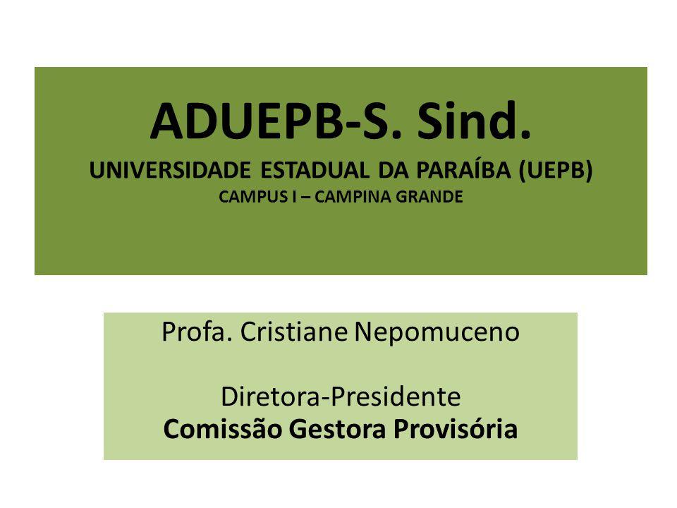 A Comissão Gestora Provisória existe em decorrência da judicialização do processo eleitoral em decorrência da constatação de vícios .