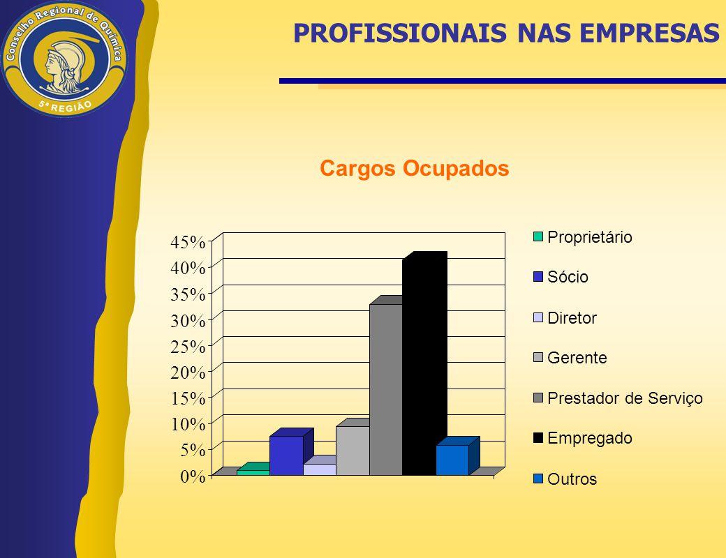 0% 5% 10% 15% 20% 25% 30% 35% 40% 45% Proprietário Sócio Diretor Gerente Prestador de Serviço Empregado Outros Cargos Ocupados