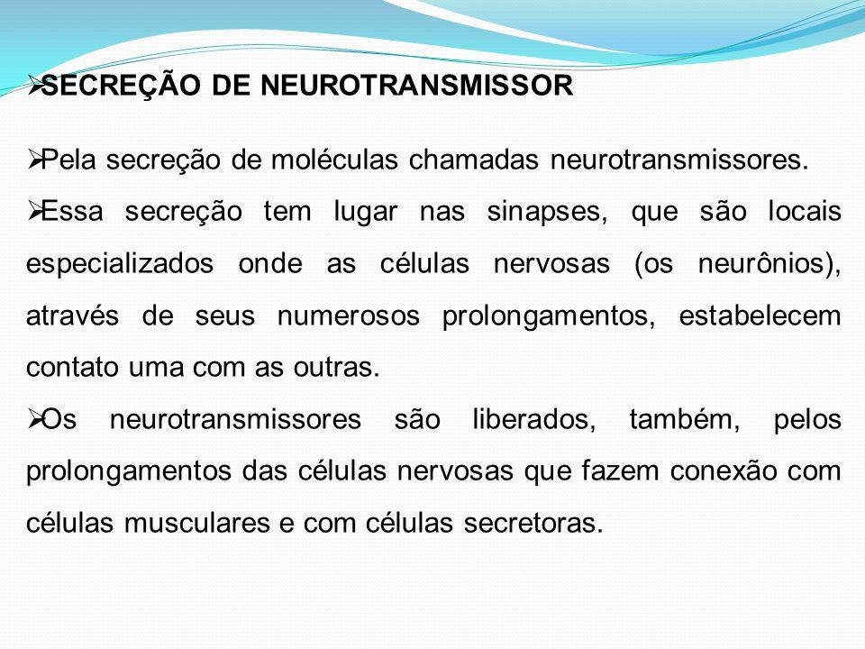  SECREÇÃO DE NEUROTRANSMISSOR  Pela secreção de moléculas chamadas neurotransmissores.  Essa secreção tem lugar nas sinapses, que são locais especi
