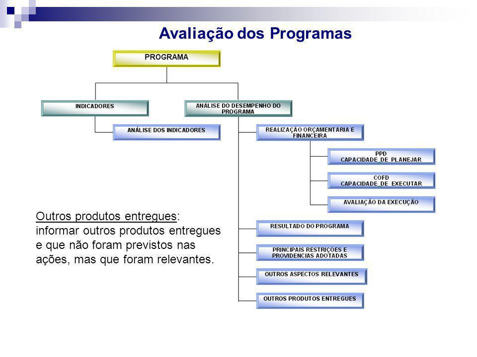 Avaliação dos Programas Outros produtos entregues: informar outros produtos entregues e que não foram previstos nas ações, mas que foram relevantes.