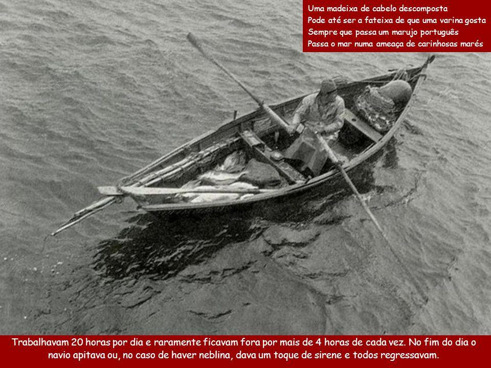 A cada 2 horas as linhas eram recolhidas e se os peixes fossem suficientes eles voltavam ao navio, partindo depois para uma segunda pesca.