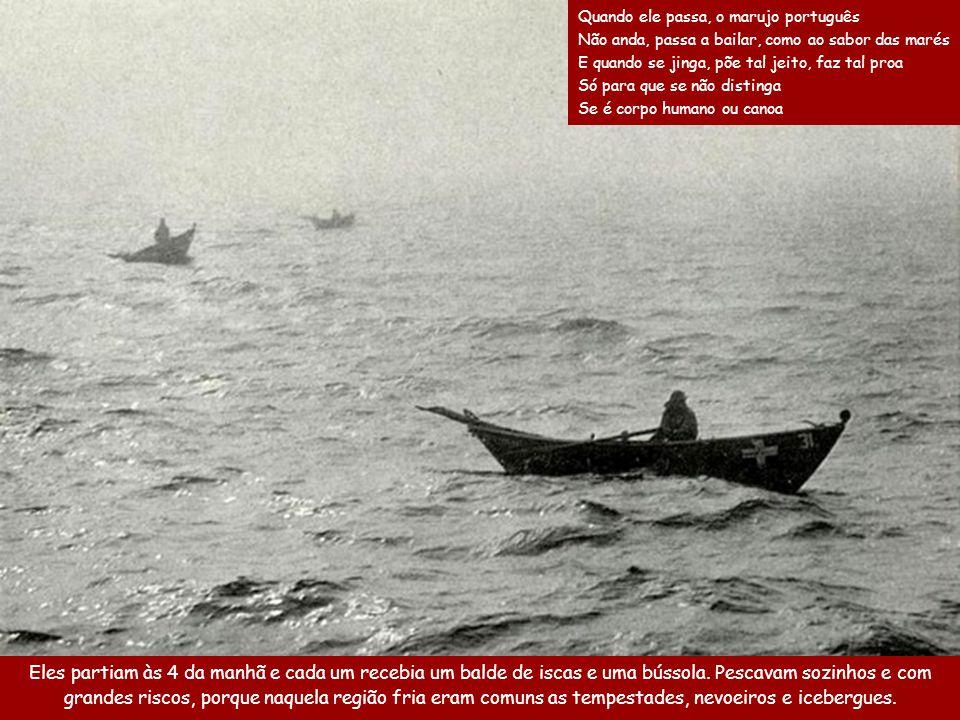Chegando nos locais de pesca, os pescadores nos dóris se afastavam a remo do navio e depois, com a ajuda de pequenas velas, partiam para a pesca.