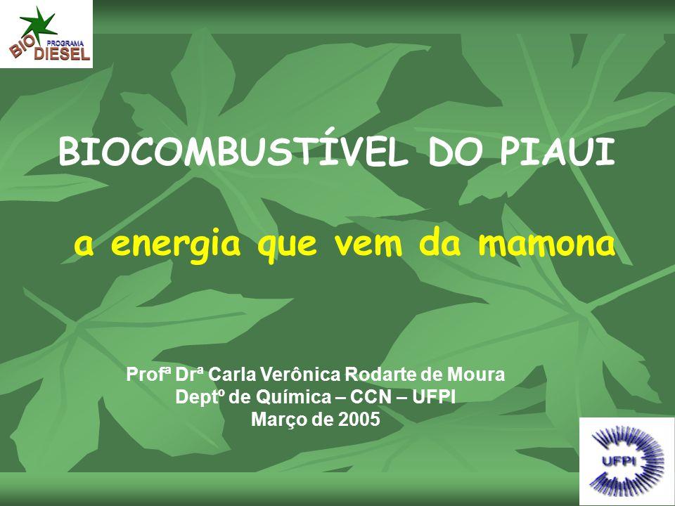 BIOCOMBUSTÍVEL DO PIAUI a energia que vem da mamona Profª Drª Carla Verônica Rodarte de Moura Deptº de Química – CCN – UFPI Março de 2005