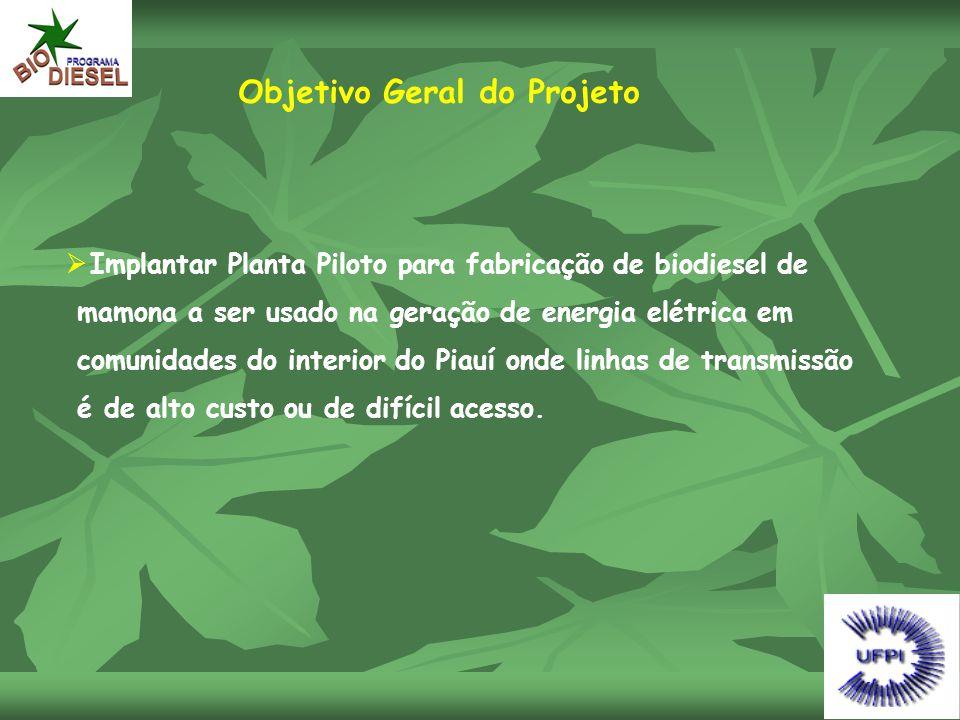 Objetivo Geral do Projeto  Implantar Planta Piloto para fabricação de biodiesel de mamona a ser usado na geração de energia elétrica em comunidades d
