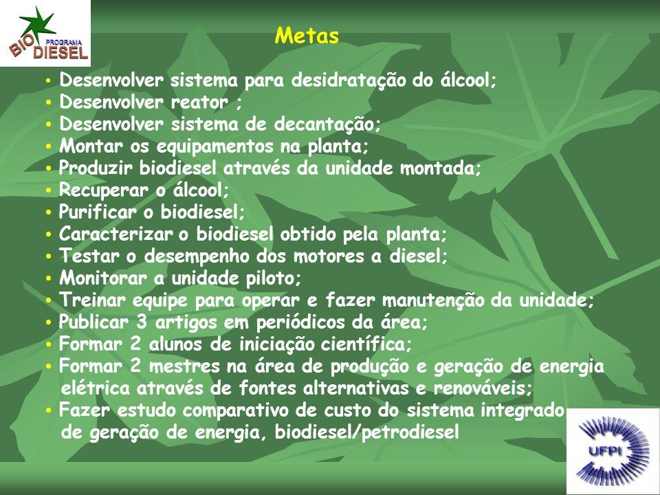 Metas • Desenvolver sistema para desidratação do álcool; • Desenvolver reator ; • Desenvolver sistema de decantação; • Montar os equipamentos na plant