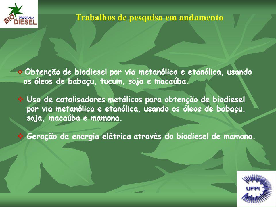 Trabalhos de pesquisa em andamento  Obtenção de biodiesel por via metanólica e etanólica, usando os óleos de babaçu, tucum, soja e macaúba.  Uso de
