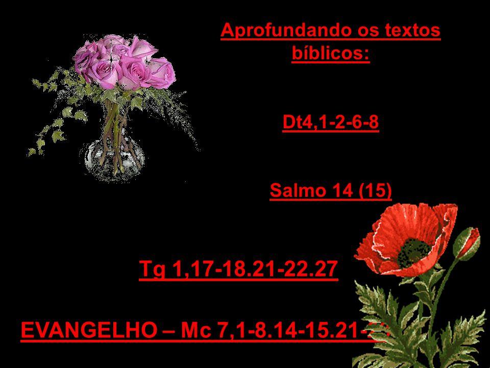 EVANGELHO – Mc 7,1-8.14-15.21-23 Tg 1,17-18.21-22.27 Aprofundando os textos bíblicos: Dt4,1-2-6-8 Salmo 14 (15)