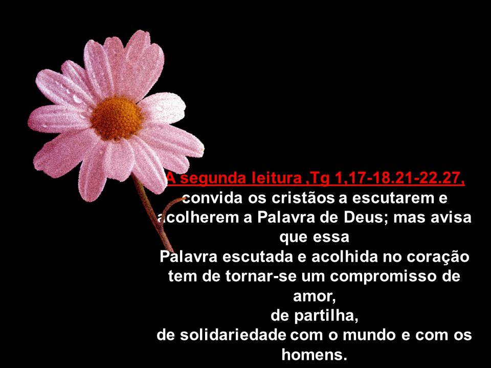 Dt4,1-2-6-8, A primeira leitura Dt4,1-2-6-8, garante-nos que as leis e preceitos de Deus são um caminho seguro para a felicidade e para a vida em plenitude.
