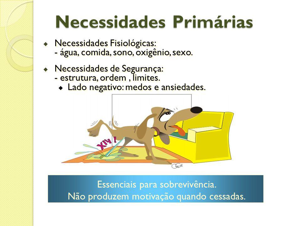 Necessidades Primárias  Necessidades Fisiológicas: - água, comida, sono, oxigênio, sexo.