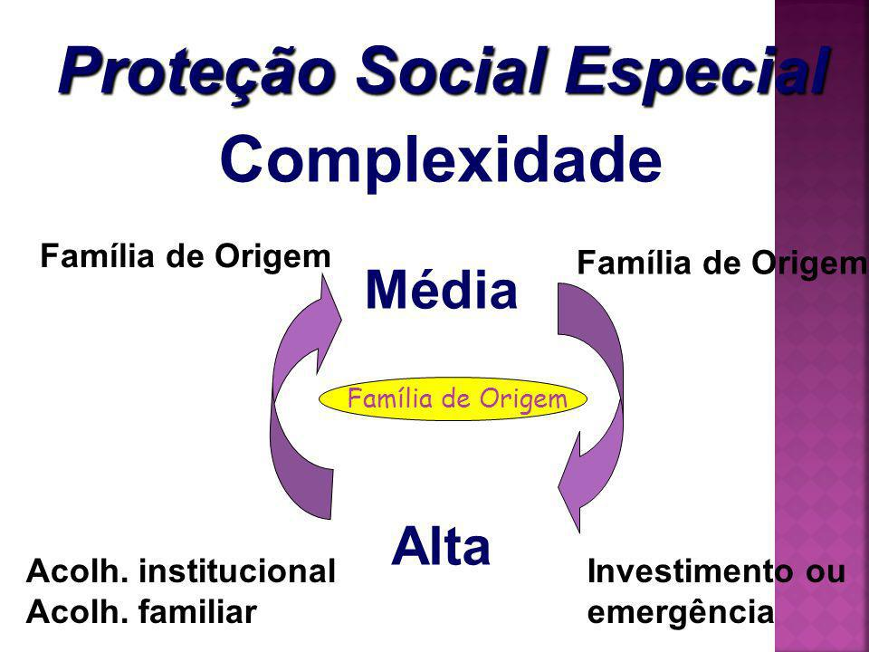 Complexidade Média Alta Família de Origem Investimento ou emergência Acolh. institucional Acolh. familiar Família de Origem Proteção Social Especial