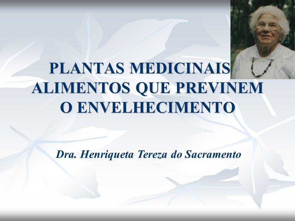 PLANTAS MEDICINAIS E ALIMENTOS QUE PREVINEM O ENVELHECIMENTO Dra. Henriqueta Tereza do Sacramento