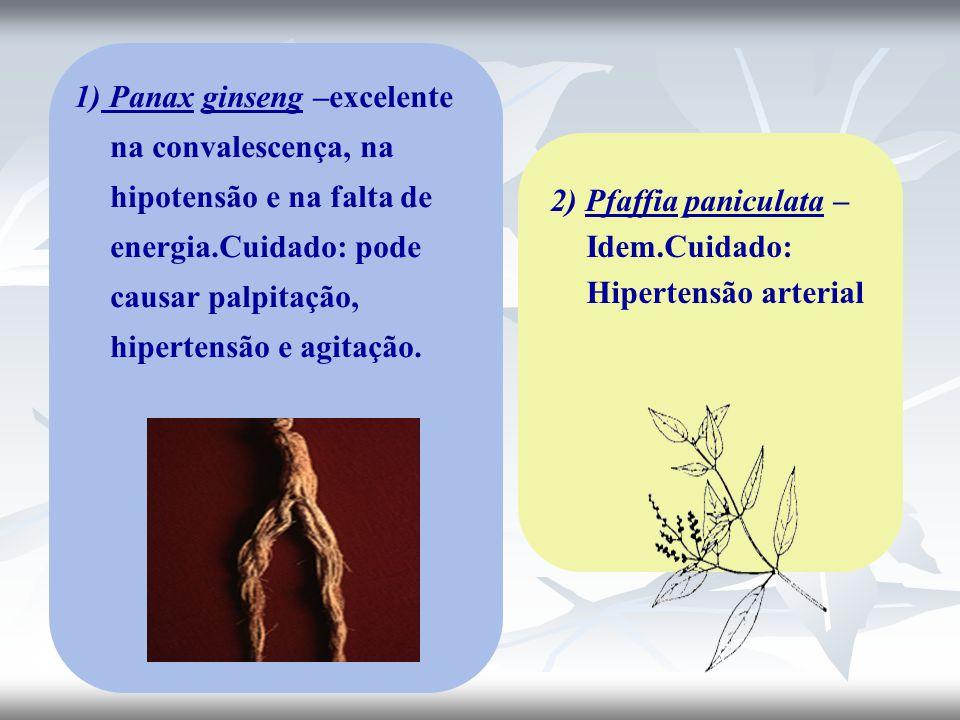 1) Panax ginseng –excelente na convalescença, na hipotensão e na falta de energia.Cuidado: pode causar palpitação, hipertensão e agitação. 2) Pfaffia