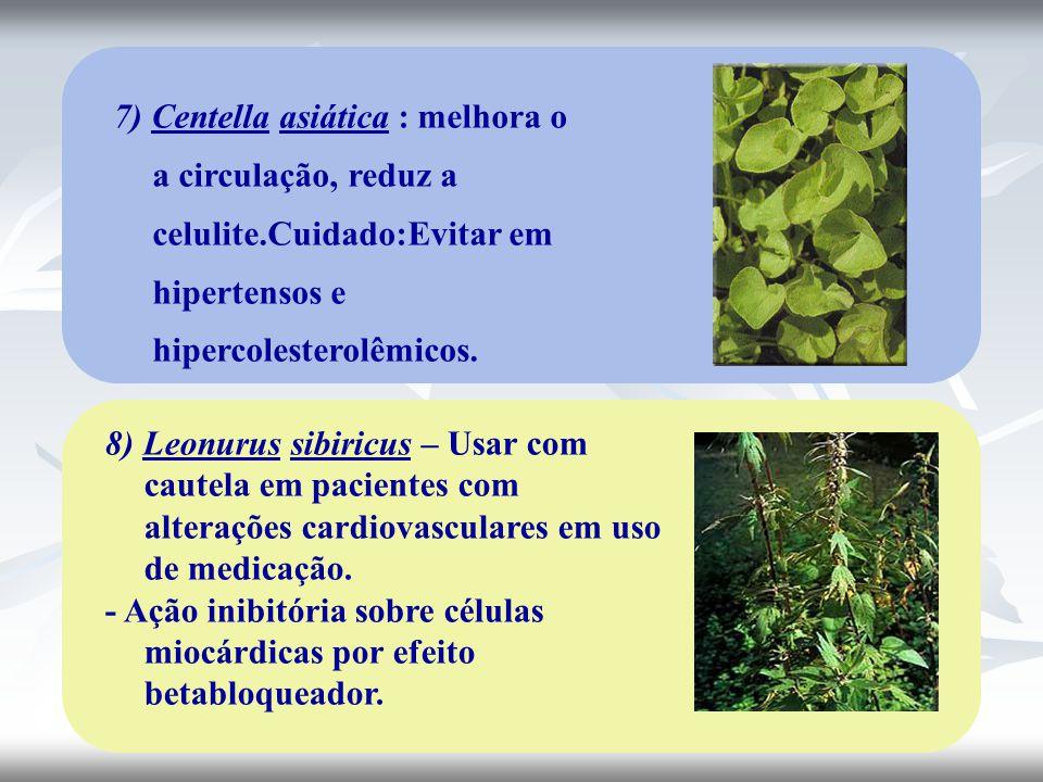 7) Centella asiática : melhora o a circulação, reduz a celulite.Cuidado:Evitar em hipertensos e hipercolesterolêmicos. 8) Leonurus sibiricus – Usar co
