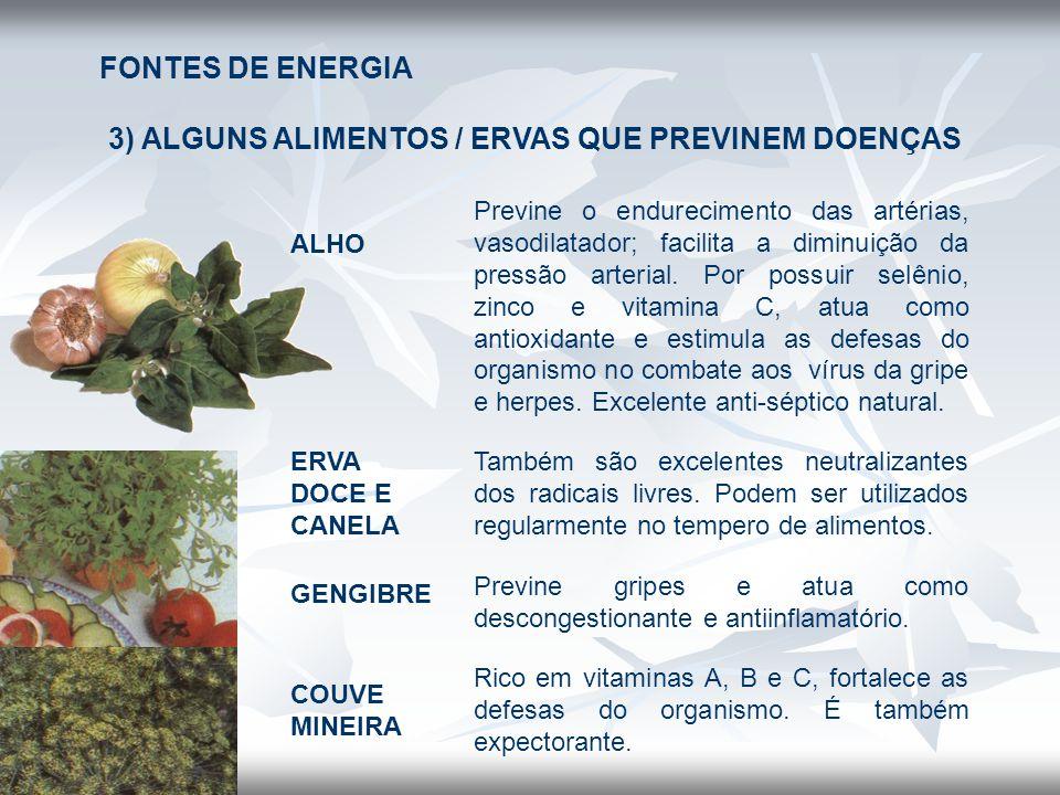 FONTES DE ENERGIA 3) ALGUNS ALIMENTOS / ERVAS QUE PREVINEM DOENÇAS ALHO Previne o endurecimento das artérias, vasodilatador; facilita a diminuição da