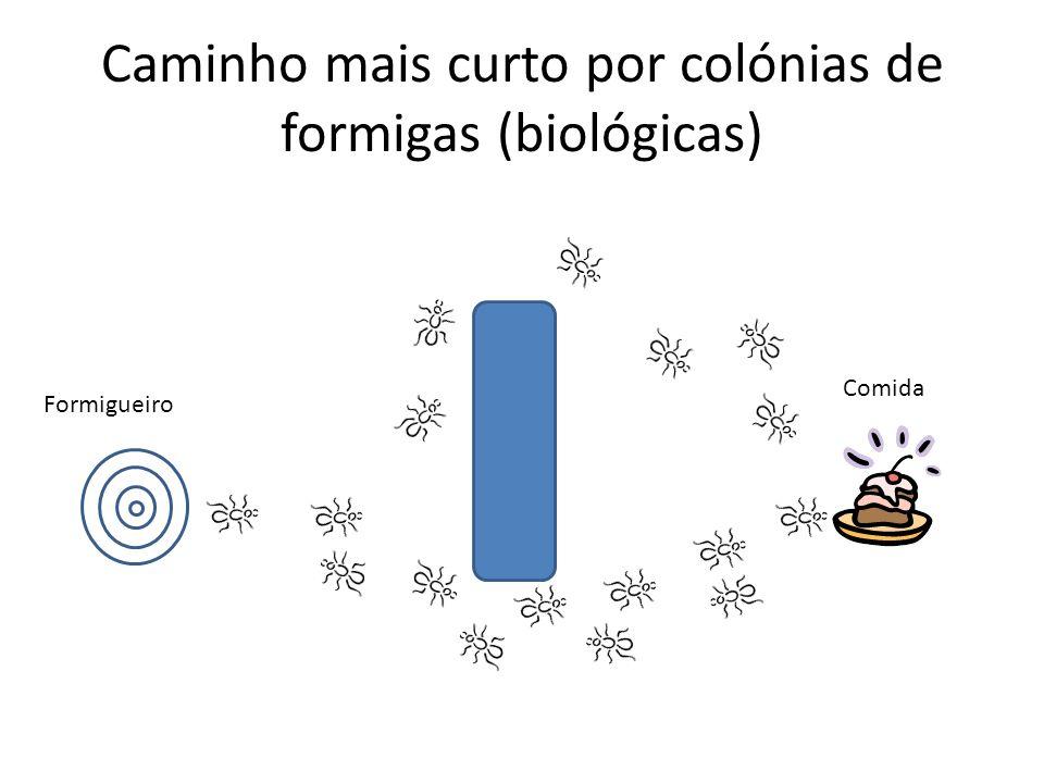 Caminho mais curto por colónias de formigas (biológicas) Formigueiro Comida