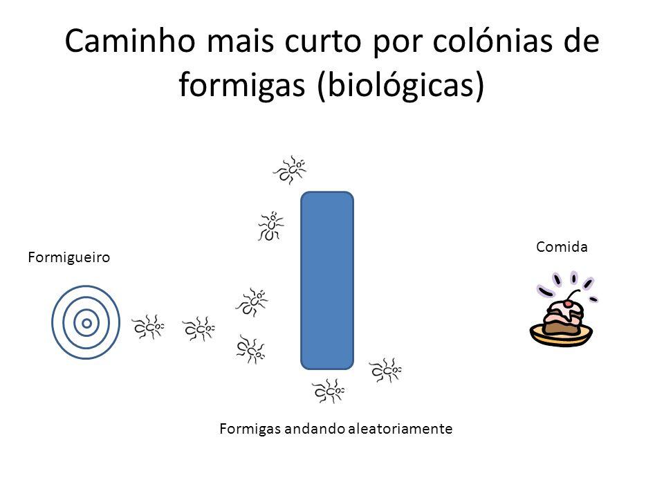 Caminho mais curto por colónias de formigas (biológicas) Formigueiro Formigas andando aleatoriamente Comida