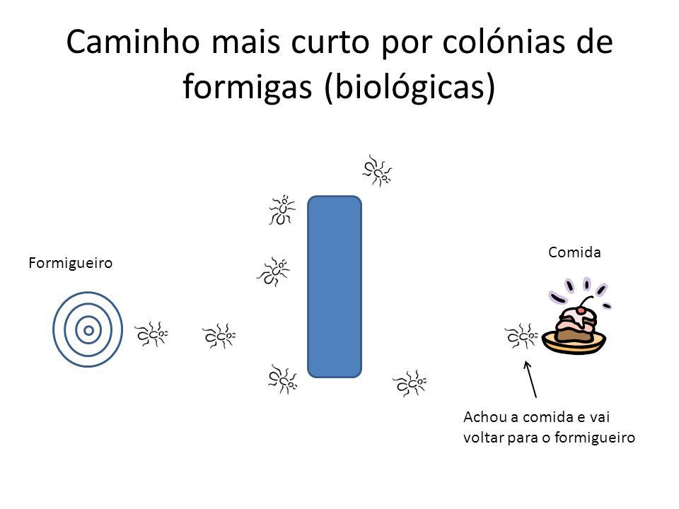 Caminho mais curto por colónias de formigas (biológicas) Formigueiro Achou a comida e vai voltar para o formigueiro Comida